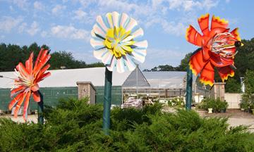 The giant flowers at burlington garden center got a face lift in the